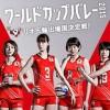 女子バレーボールワールドカップ日本韓国